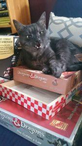 Dungeon Cat